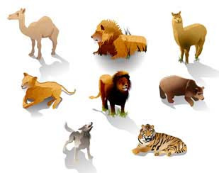 Wild Animal Sanctuary map animal illustrations